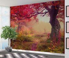 Beautiful Colour Saturated Acacia Tree Autumn Wallpaper Wall Mural XXL 3mx2.4m