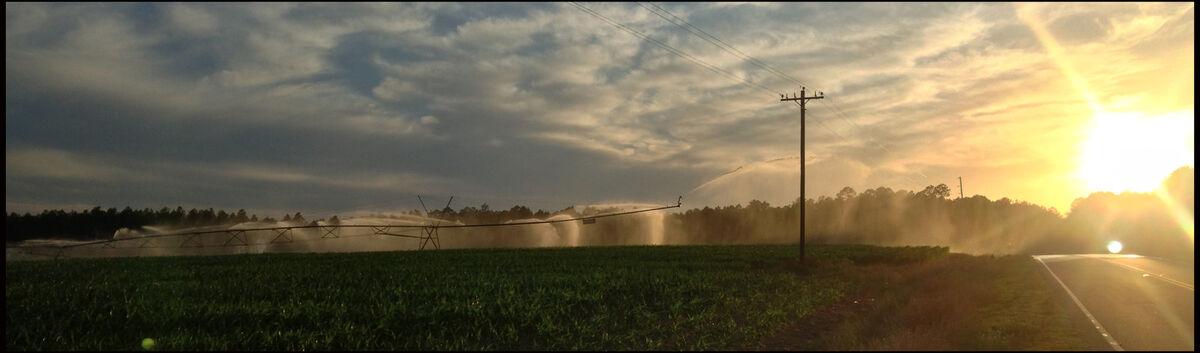 THE PARTS FARM - 912-526-3080