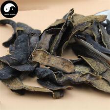 Dried Hirudin 50g, Medicinal Leeches, Chinese Hirudo Medicinalis, 水蛭 Shui Zhi