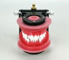 Dental Laboratory