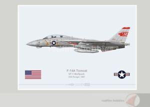 Warhead Illustrated F-14A Tomcat VF-1 Wolfpack 111 Aircraft Print
