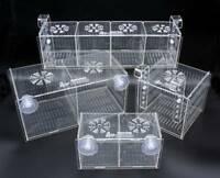 Aquarium Overload Clear Acclimation Breeder Mushroom Quarantine Box Free US Ship