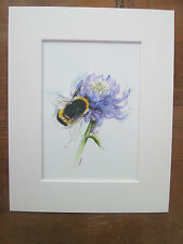 "Watercolour bee and clover, print, of original painting, in 10"" x 8"" Mount"