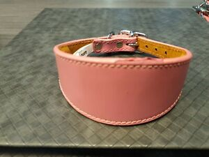 ITALIAN GREYHOUND COLLAR LEATHER SUEDE BACKING PADDED 10-12 INCH SAMPLE K3