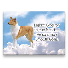 Smooth Collie True Friend From God Fridge Magnet No 1