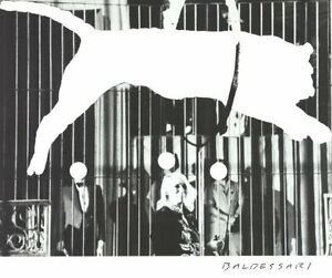 JOHN BALDESSARI Tiger with No Stripes 20 x 24 Poster 2017 Pop Art Black & White