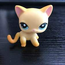 Littlest Pet Shop LPS Figure Toys Short Hair Tan Yellow Kitty Kitten Cat #339