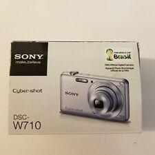 Sony Cyber-Shot DSC-W710 16.1 MP Digital Camera - Silver