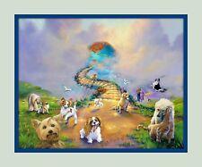 Rainbow Bridge Dogs in Heaven 11x14 Matd 8x10 Print Dog  Memorial Sympathy V5