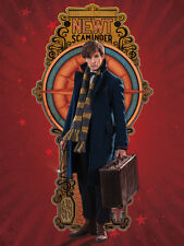 Fantastic Beasts - Newt - Ready Framed Canvas 60x80cm
