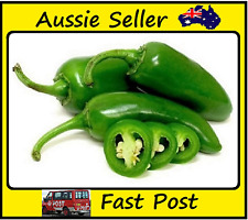 Jalapeno Chilli Pepper Seeds Fast Growing Most Popular Pepper 100 Seed Lot