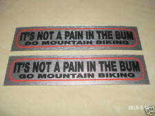ITS NOT A PAIN IN THE BUM GO MOUNTAIN BIKING METALLIC STICKERS /DECALS AUFKLEBER