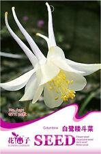 Original Package 30 White Columbine Seeds Aquilegia Vulgaris Flowers A191