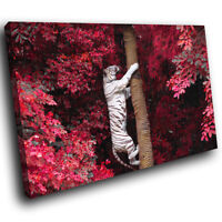 White Tiger Pink Tree Red Funky Animal Canvas Wall Art Large Picture Prints