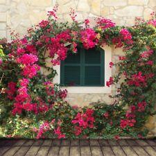 Backdrop Vinyl Prop Show Background Studio Photo Garden Floral Wood Floor 8x8ft