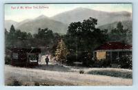 Mt Wilson, CA   FOOT OF MT WILSON TRAIL 1900s NEWMAN POSTCARD