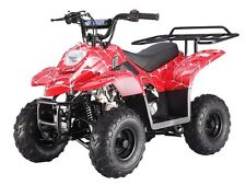 110cc atv 4 wheeler for sale kids taotao 110 cc atv w/ safety features Free ship