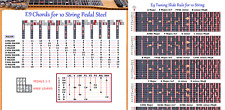 E9 CHORD & SLIDE RULE CHARTS FOR 10 STRING PEDAL STEEL GUITAR - 2 LAMINATIONS