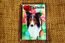 Sheltie Gift Dog Fridge Magnet 77 x 51 mm Shetland Sheepdog Birthday Gift