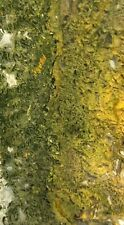 Maury Mountain Moss Agate Slabs (3) Lapidary Cabbing Rough