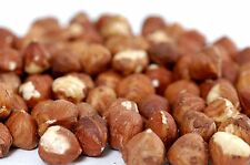 Country Products Hazelnuts Nuts Raw Natural 1 Kilo Food Meal Diet Health Care