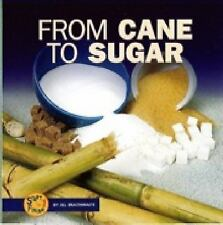 From Cane to Sugar (Start to Finish (Lerner Paperback))
