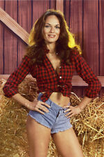 CATHERINE BACH THE DUKES OF HAZZARD 36X24 POSTER PRINT