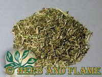 Goldenrod Herb Tea Bulk Loose Cut Sifted 1 2 4 8 12 oz ounce lb lbs pound