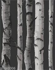 Birch Tree Black / Silver Wallpaper 31052