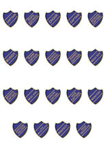 School Shield Badge Choice Of Colours & Titles (Gel Domed) FREE P&P!!