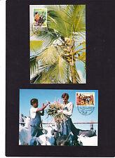 UNO Genf Maximumkarte 06.05.1988 Mi. Nr. 167 + 168 aus ABO-Lieferung, siehe Scan