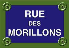 Réplique PLAQUE de RUE PARIS RUE DES MORILLONS Objets perdus 20X30CM ALU NEUF