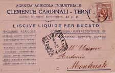 # TERNI: testatina-AZ.AGRICOLA IND. CLEMENTE CARDINALI - MACCHINE AGRICOLE 1924
