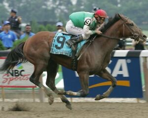 AFLEET ALEX 8X10 PHOTO HORSE RACING PICTURE RACE ACTION