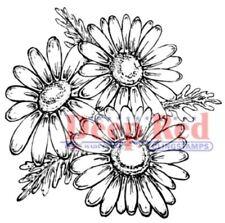 Deep Red Rubber Stamp Daisies Daisy Flower Trio Garden Botanical