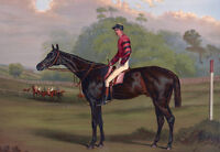 """perfact 36x24 oil painting handpainted on canvas """"Jockey On Racehorse """" NO3333"""