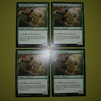 Druid of the Cowl x4 Aether Revolt 4x Playset Magic the Gathering MTG