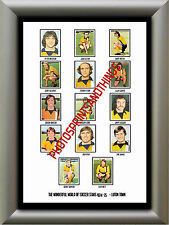 LUTON TOWN - 1974-75 - REPRO STICKERS A3 POSTER PRINT