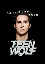 """086 Teen Wolf - American TV Series Hot Shows 14""""x20"""" Poster"""