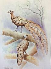 Grande aquarelle oiseaux signée Mireille Bailly