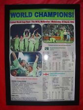 Pakistan 1992 ICC Cricket World Cup winners - framed print