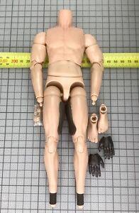 1/6 DamToys NSWDG 78065 - Nude Body