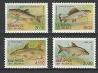 Belarus 1997 Fauna Fish 2 MNH stamps