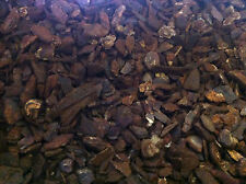Pollywog Coarse Bark - 5lt - Orchid Pine Chips Substrate Reptile Frog Vivarium