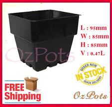 100mm Plastic Squat Punnet Pots  x 90pcs - Plant Cutting, Seed Propagation