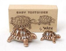 Wade Tortoise Family - Baby Tortoises In Original Box