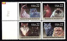 USA - STATI UNITI - 1988 - Fauna. Gatti di razza