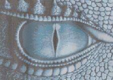 Dragon's Eye Counted Cross Stitch Kit