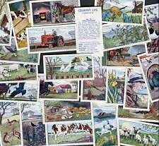 """ARMITAGE BROS PET FOODS 1968 SET OF 25 """"COUNTRY LIFE"""" TRADE CARDS"""