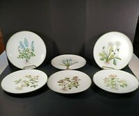 Set Of 6 Salad Luncheon Plates Floral By Horchow 8 1/8""